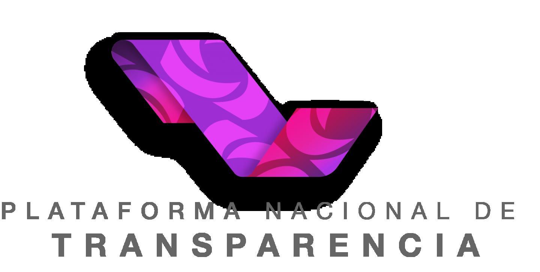 PLATAFORMA NACIONAL TRANSPARENCIA